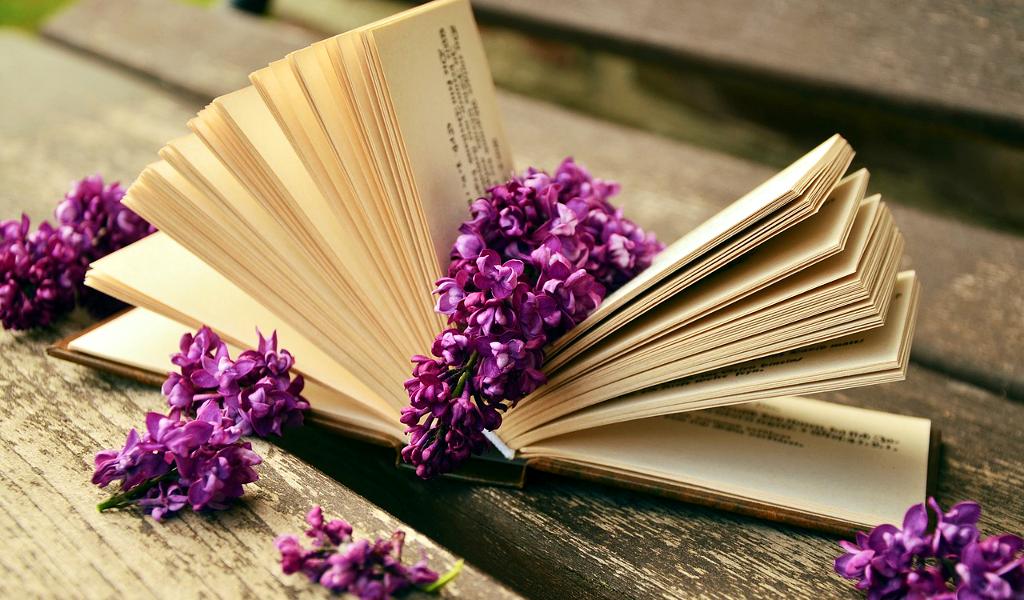 Redazione Booksandbooks